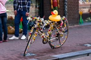 bike duck